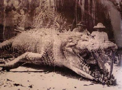 croc1957