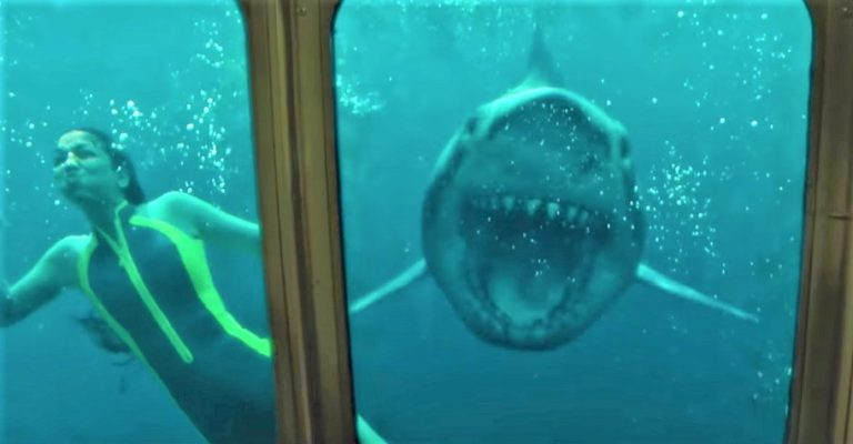 47-METERS-DOWN-UNCAGED-768x400